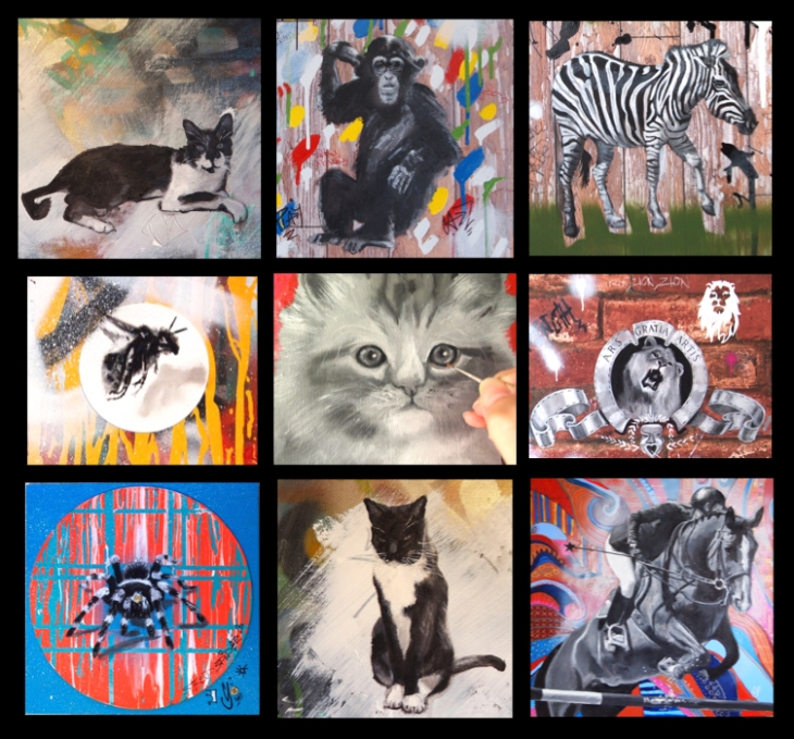 black and white animals pets.001